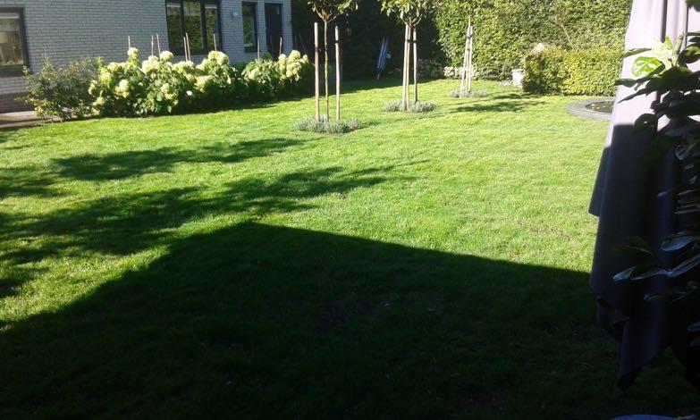 grasherstel-tuinaanleggen-venlo-2